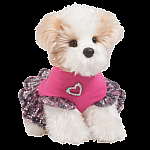 Bridgette Shihtzu with Dress